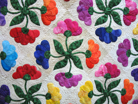 The biology quilts all about applique